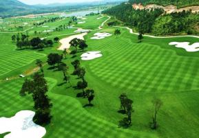 tam đảo golf & resort